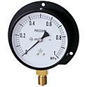一般蒸気用圧力計(B形立型・φ100)