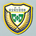 "Welder Emblem, ""General Safety and Health Administrator"""