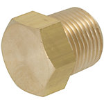 Brass Fittings for Steel Pipe/Plug