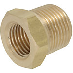 Brass Fittings for Steel Pipe/Reducer Bushing