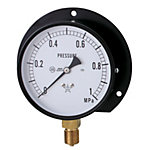 General Purpose Pressure Gauge (B Type Vertical /Diameter φ75)