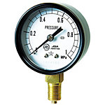 General Steam Pressure Gauge (A Type Vertical Type / φ60)