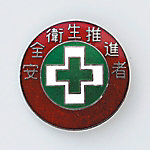 "Badge ""Safety and Health Promoter"""